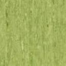 optima-3242861-green