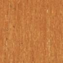 optima-3242867-orange